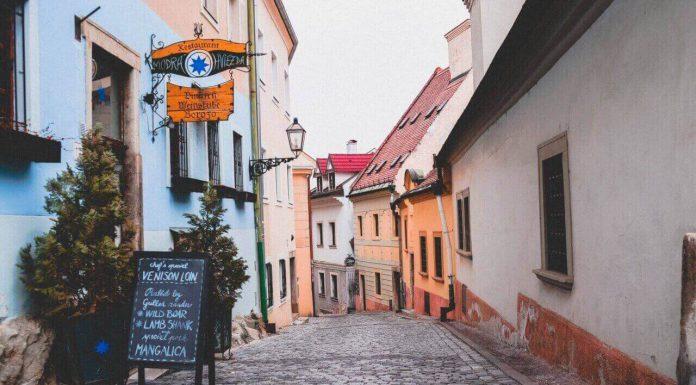 Словацкий язык для начинающих