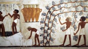 Древние виноделы