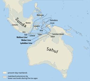 Откуда пришли аборигены